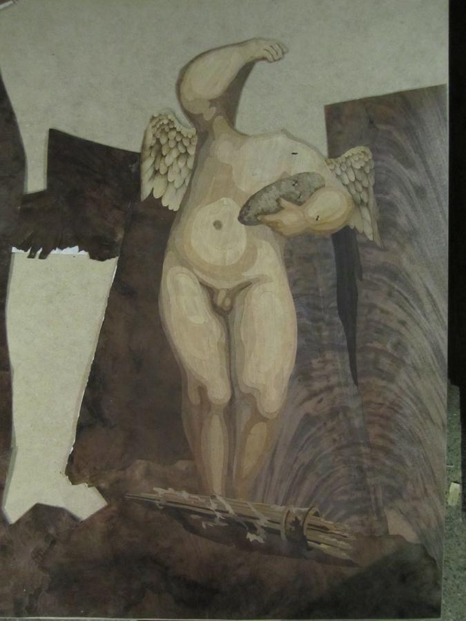 Procés del Cupido.