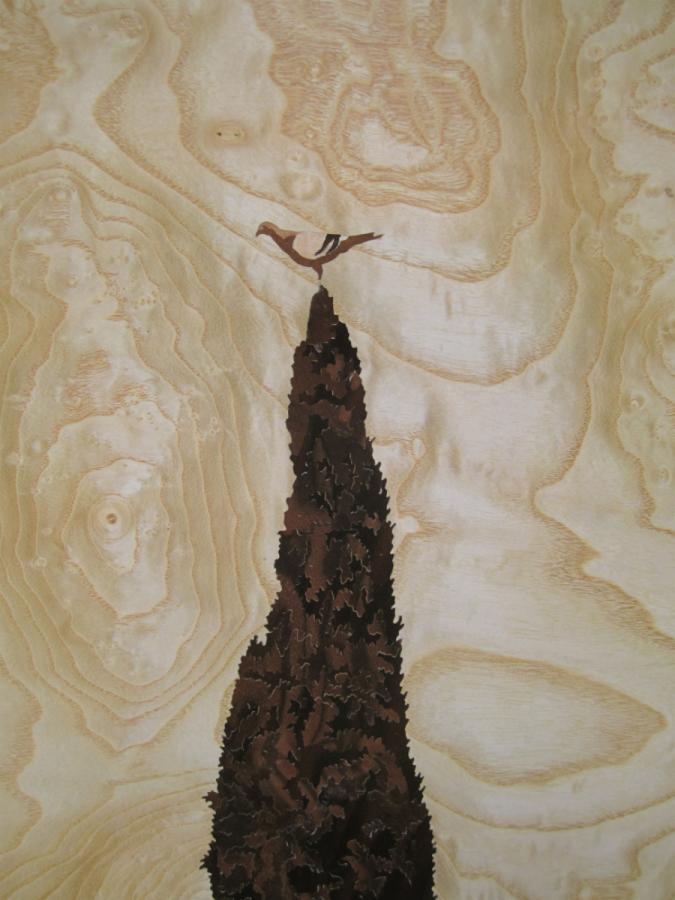 Detall del xiprer amb el colom.